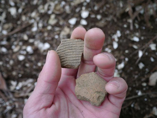 貝塚 土器片 文様