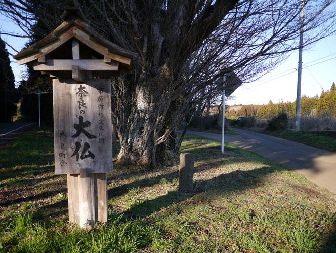 奈良の大仏 市原