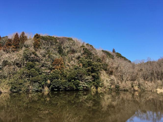 米沢の森 腰巻池 中野台城