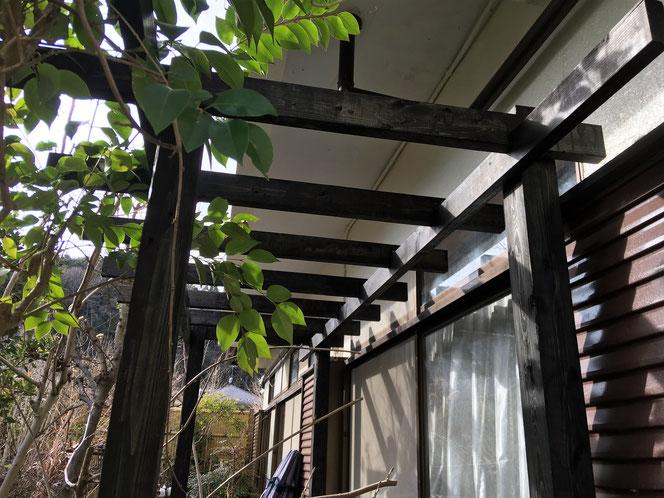 パーゴラ 木工 庭 武田屋作庭店