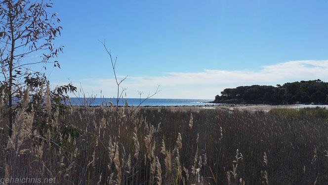 Reparaturpause 2. An der Küste.