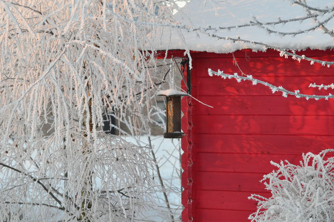 Das rote Gartenhaus im Bild ist kein Blockhaus - Bild Pixabay