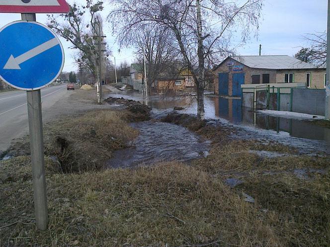 Фото: Юрій Зіненко
