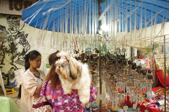 まだ夕方で明るい チェンマイ サタデーマーケット。毛の長いもふもふの犬、ワンちゃんタイ人女性の肩にかつがれている。飼い主はタイ雑貨の女性店主と買い物の話中。[タイ・チェンマイ旅行(出張)写真ブログの画像]