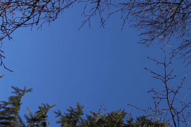 Vom Himmel seh ich einen Splitter