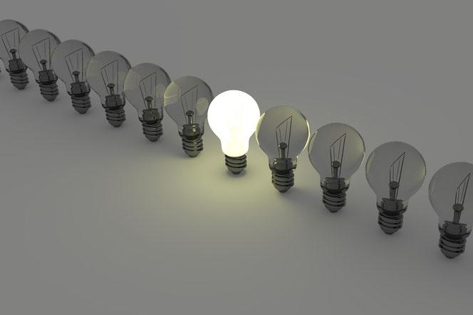 Er ist die Leuchte unter den Glühbirnen. Und seine Mama ist geiler als deine Mama. (Bild: pixabay.com)
