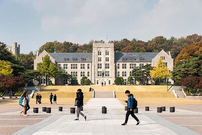 University Korea