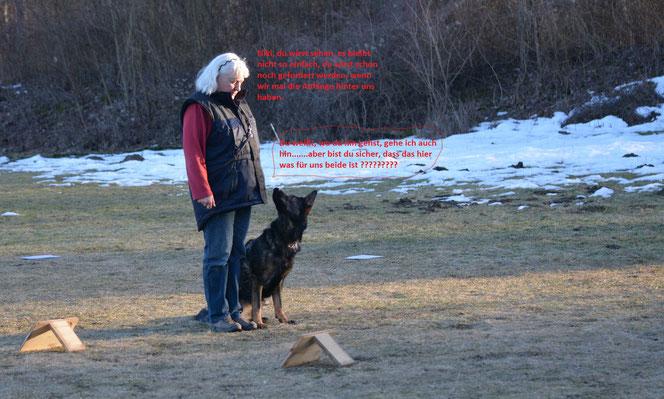 Nikitta´s erster Ralley Obedience Parcour. Klar hat sie es super gemacht, aber Begeisterung sieht anders aus.