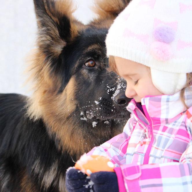 Eine grosse Liebe........Eyko aus dem Waldquellental (Alexa/Waro) in seiner Familie