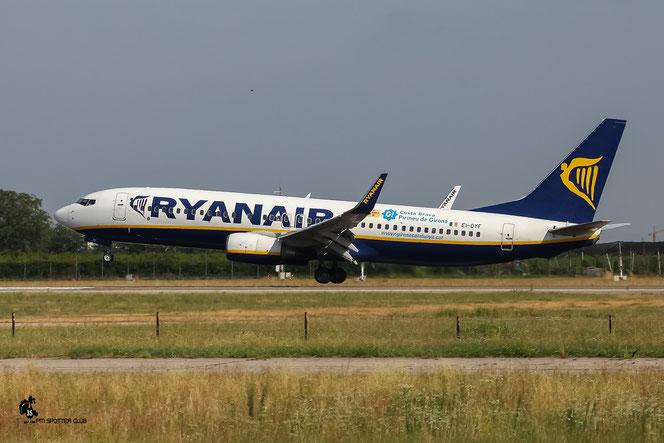 EI-DYF B737-8AS 36569/2549 Ryanair @ Aeroporto di Verona - 23/07/2016 © Piti Spotter Club Verona