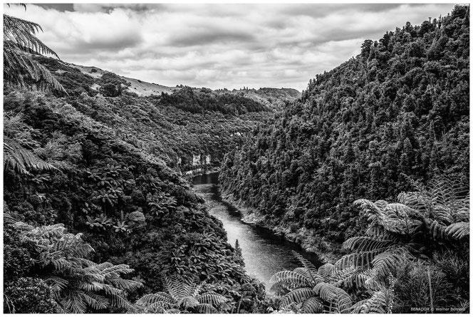 Wanganui NZ, 2014