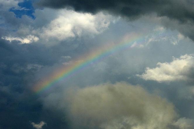 空のご機嫌…虹が!