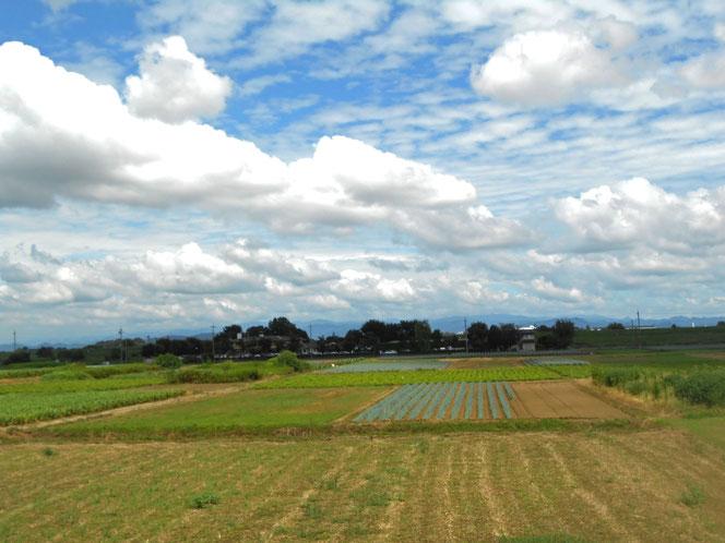 景色 グライダーの着陸風景を見かけた昨日。時の流れに穏やかな日々をと願う気持ちで。