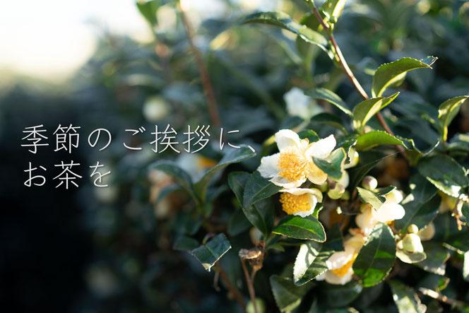 和紅茶, 緑茶, さしま茶, 猿島茶, 美味しい, 通販, お取り寄せ, 茶園, 産地直送