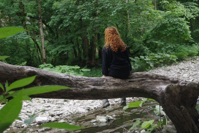 Das halb ausgetrocknete Bachbett der Wutach in der Wutachschlucht, Hochschwarzwald. Die Wandertour zwischen Wutachmühle und Schattenmühle, leicht mit dem Wanderbus zu erreich, ist wirklich wunderschön.