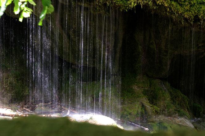 Zwischen Bad Boll und der Schattenmühle kann man diesen tollen Wasserfall, eher eine moosige Dusche, bestaunen. Der Schluchtensteig zwischen der Wutachmühle und der Schattenmühle hat einige für Wanderer zu bieten.