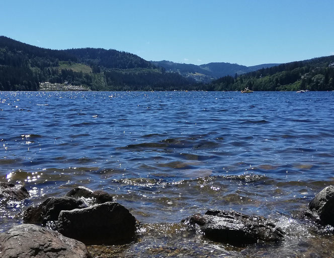 Panorama am Titisee