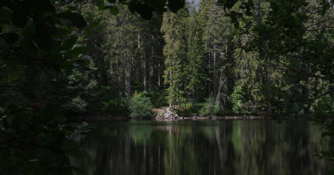Der Mathisleweiher in der Nähe von Hinterzarten im Hochschwarzwald auf dem Säbel-Thoma-Weg