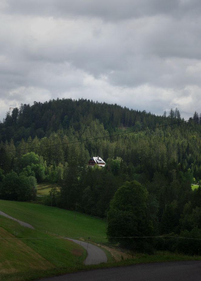Auf der Straße zum Mathisleweiher nähe Hinterzarten - Urlaub und Wanderwege im Hochschwarzwald