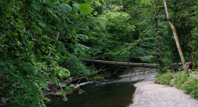 Erste Querung der Wutach in der Schlucht - Hochschwarzwald - Trip