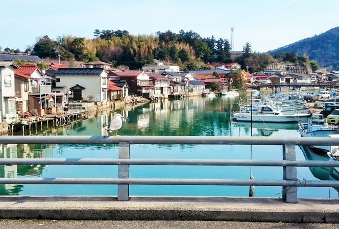 西町愛の橋商店街 八尾川橋 ウミネコ