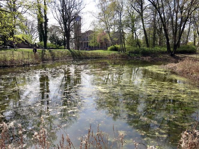 Der Teich im Schlosspark ruht schon seit einigen Jahren still. Früher sorgte hier eine hübsche Fontäne für Bewegung.
