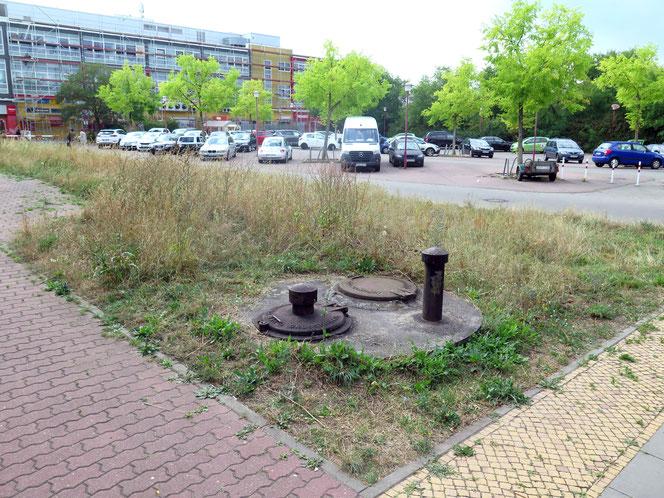 Auf dem Grundstück in der Etkar-André-Straße befinden sich derzeit ein Parkplatz und eine Grünfläche.