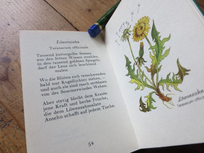 Aus diesem Büchlein ist das Gedicht zur gesuchten Pflanze entnommen. Aber Achtung: Des Rätsels Lösung ist nicht der Löwenzahn - das wäre doch ein wenig einfach! Den Autor und Titel des 1962 erschienenen Buches verrate ich nach der Auflösung des Rätsels.