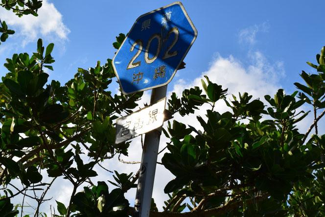 緑のボランティア 河川ボランティア 沖縄県緑化推進委員会