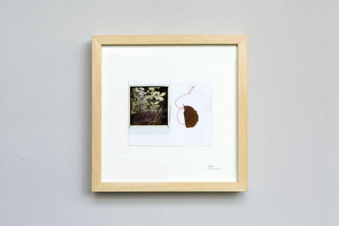 Stefano Mario Zatti, soldati, foglie, Ungaretti, arte contemporanea, land art, arte ambientale, memoria, autunno, alberi, filo rosso