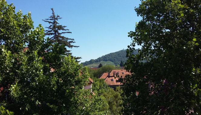 Die Aussicht vom Arbeitsplatz zum Schlossberg mit dem Kanonenplatz