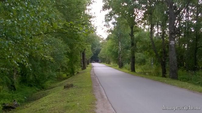 Дорога к музею-усадьбе Суйда