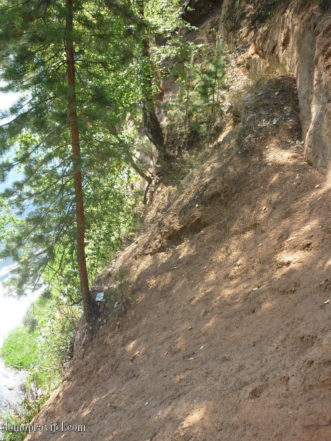 Песчаный склон реки Оредеж