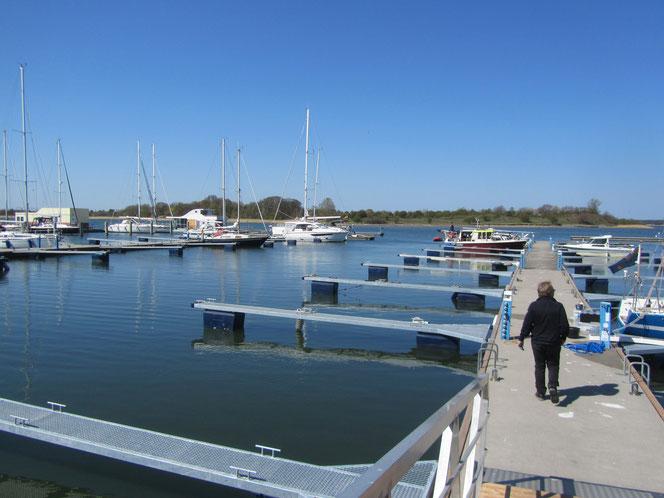 Hafen am Strelasund bei Devin  Hafen Neuhaus  Marina