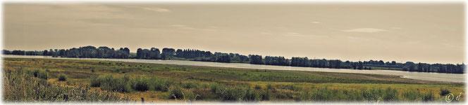 Naturparadies Maas & ihr Umland