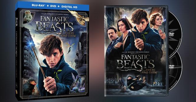"""Les visuels du Blu Ray et du DVD des """"Animaux Fantastiques"""""""