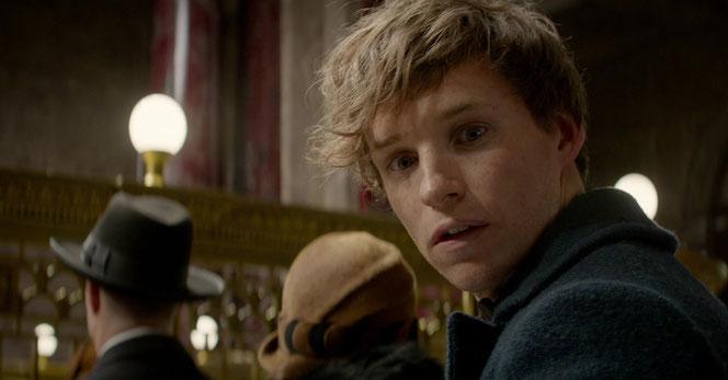 Eddie Redmayne (Norbert Dragonneau) - Image issue du deuxième trailer