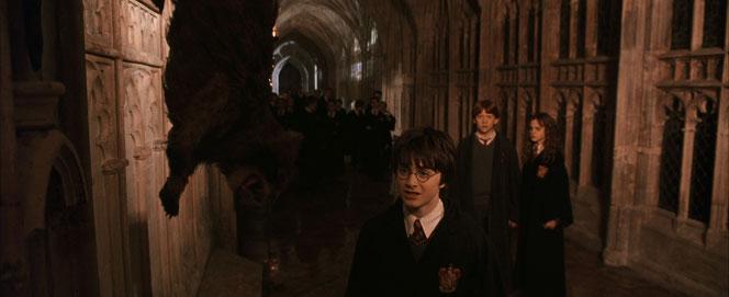 Le trio découvre Miss Teigne pétrifiée. (Harry Potter et la Chambre des Secrets - 2002)