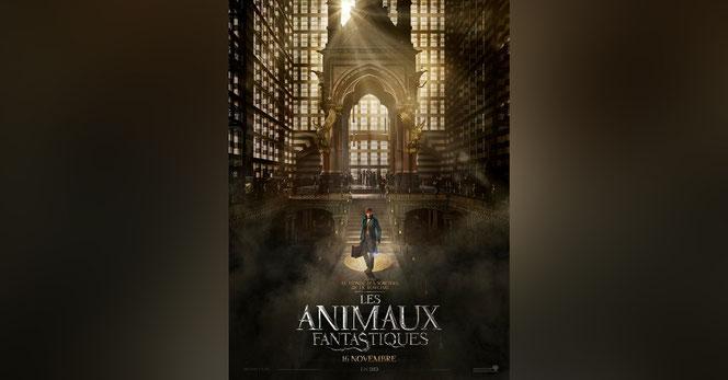 """L'affiche française des """"Animaux Fantastiques"""""""