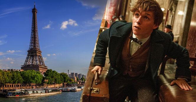 """L'intrigue du deuxième film de la saga """"Les Animaux Fantastiques"""" se déroulera en partie à Paris"""