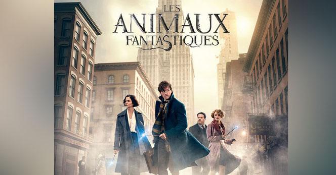 """Une toute nouvelle affiche française de """"Les Animaux Fantastiques"""" (@Animaux Fantastiques Facebook)"""