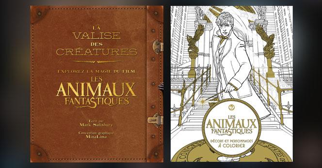 Deux des livres dérivés du film et traduits en français