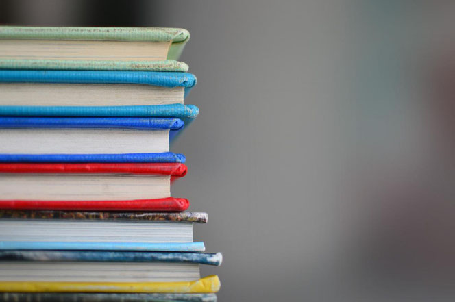 Bunte Vielfalt: Bücher gibt es zu allen, ja wirklich ALLEN Themen des Lebens. Da ist für jede*n etwas dabei.