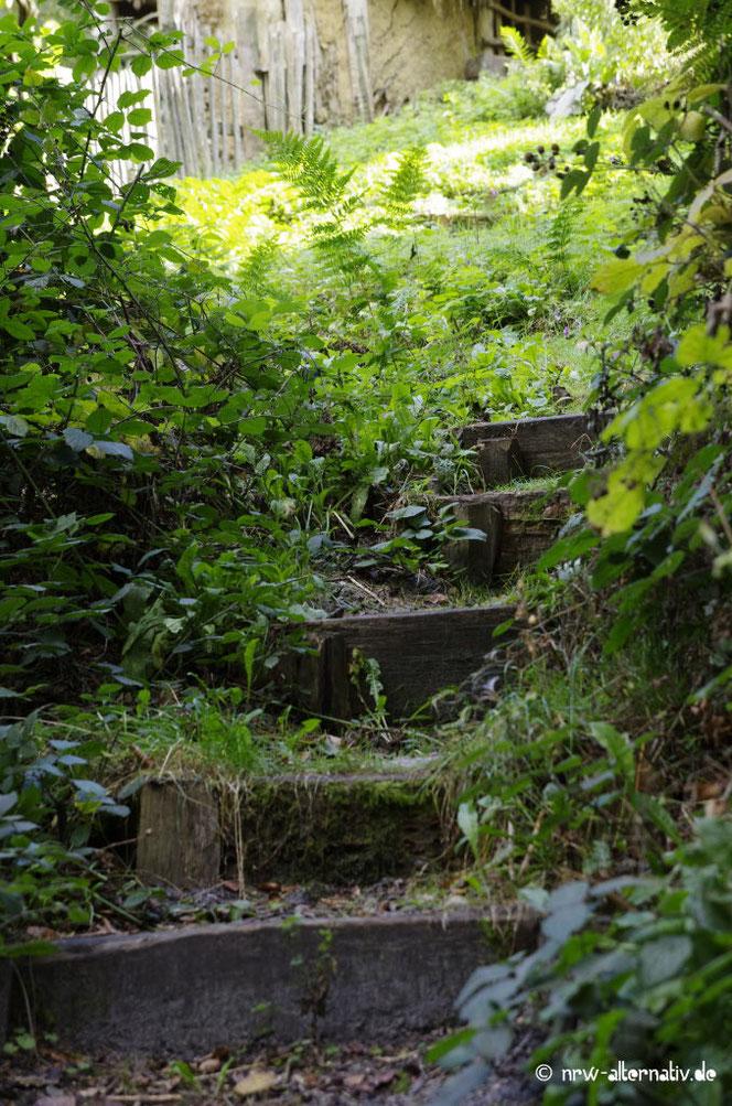 Treppe im AFM zum Kräutergarten