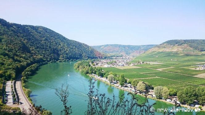 Moselschleife, blaues Wasser, Wald, Berge, Wein und Sonne. Blick von Burg Metternich auf die Mosel.