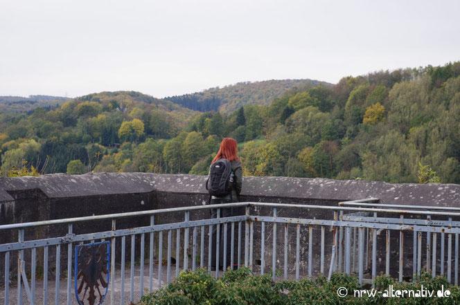 Arnsberger Aussichtsroute Arnsberger Schloss Aussicht