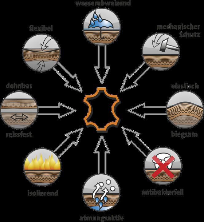 Grafische Darstellung der wesentlichen Vorteile von Leder, vereint in einem Material.
