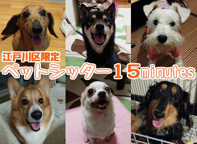 江戸川区限定ペットシッター15minutes