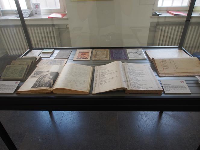 Bild: Blick in die Ausstellungsvitrine