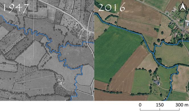 Exemple de l'évolution du cours de l'Udon entre 1947 et 2016